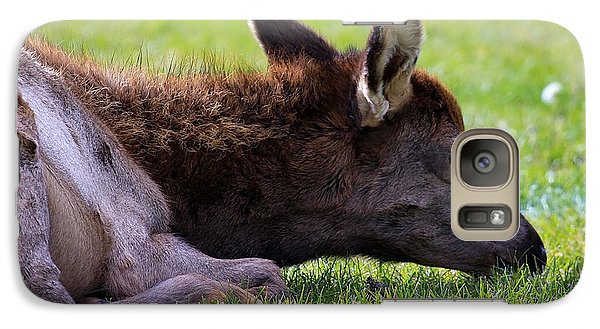 Galaxy Case featuring the photograph Baby Elk by Steve McKinzie
