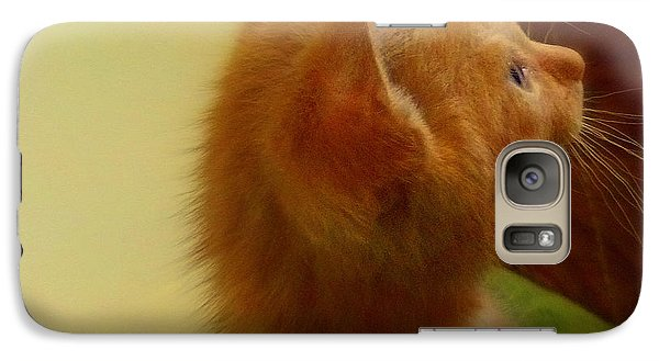 Galaxy Case featuring the photograph Baby Kitty by Garnett  Jaeger