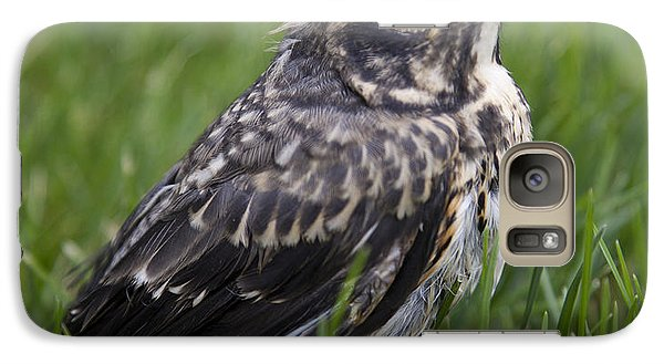Galaxy Case featuring the photograph Baby Robin by John Crothers