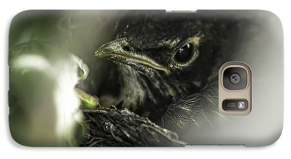 Galaxy Case featuring the photograph Baby Robin by Tom Gort