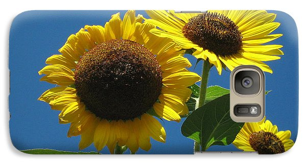 Galaxy Case featuring the photograph Back Bay Sunflowers by Bruce Carpenter