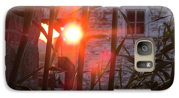 Galaxy Case featuring the photograph Bamboo Sunrise by Tina M Wenger