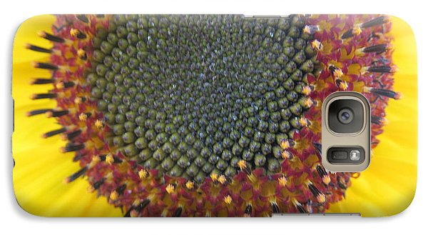 Galaxy Case featuring the photograph Beauty And The Ladybug by Tina M Wenger