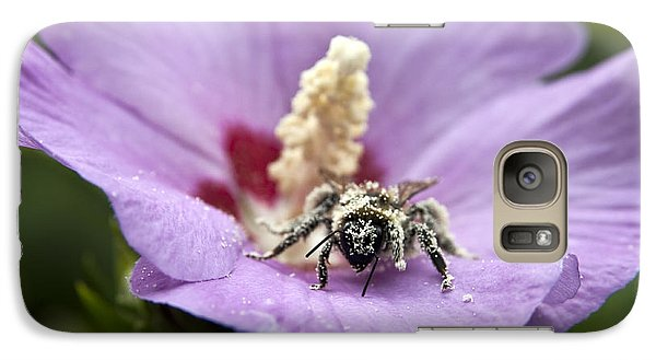 Galaxy Case featuring the photograph Bee Covered In Pollen  by Jeannette Hunt