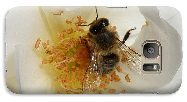 Galaxy Case featuring the photograph Bee In A White Rose by Lainie Wrightson