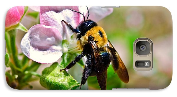 Galaxy Case featuring the photograph Bee On An Apple Blossom by Susan Leggett