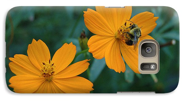 Galaxy Case featuring the photograph Bee On Cosmos Flower  by Tom Wurl
