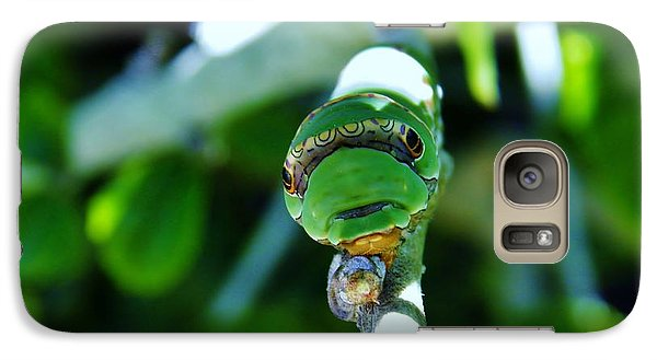 Galaxy Case featuring the photograph Big Green Caterpillar by Werner Lehmann