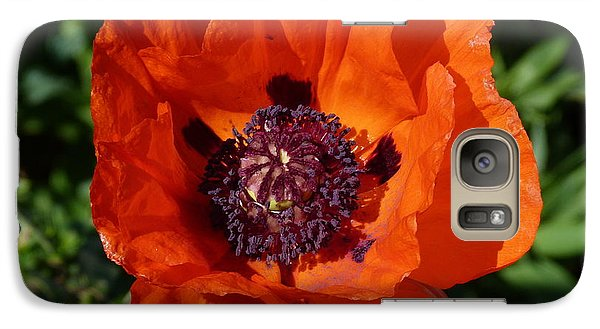 Galaxy Case featuring the photograph Big Red Poppy by Lynn Bolt