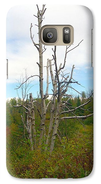 Galaxy Case featuring the photograph Birch Tree by Jim Sauchyn