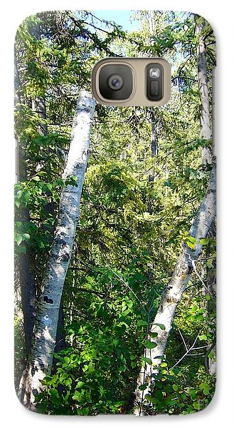 Galaxy Case featuring the photograph Birch Trees by Jim Sauchyn