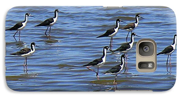 Galaxy Case featuring the photograph Black-neck Stilt Dressed In Their Best by Roena King
