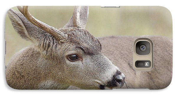 Galaxy Case featuring the photograph Black-tailed Deer by Doug Herr