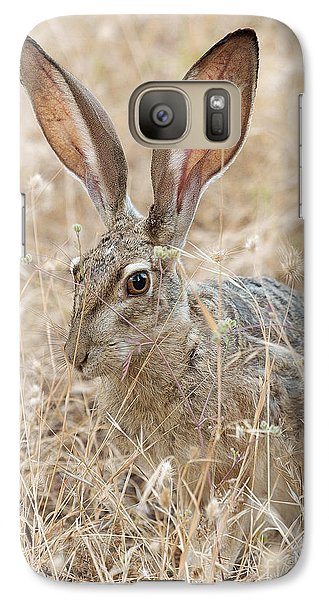 Galaxy Case featuring the photograph Black-tailed Hare by Doug Herr