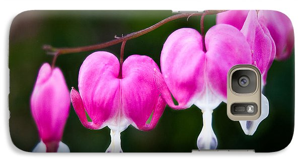 Galaxy Case featuring the photograph Bleeding Hearts 001 by Larry Carr
