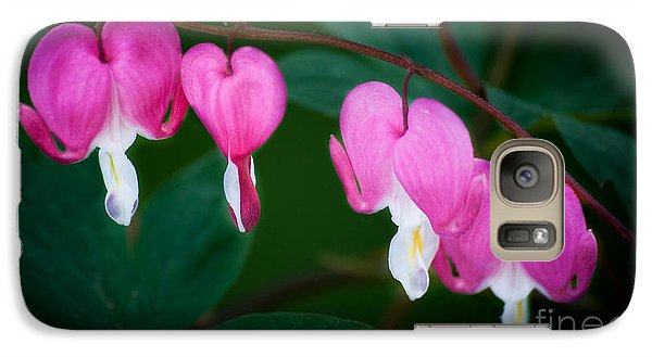 Galaxy Case featuring the photograph Bleeding Hearts 002 by Larry Carr