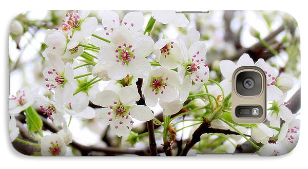 Galaxy Case featuring the photograph Blooming Ornamental Tree by Kay Novy