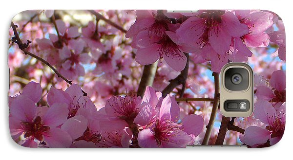 Galaxy Case featuring the photograph Blossoms by Lydia Holly