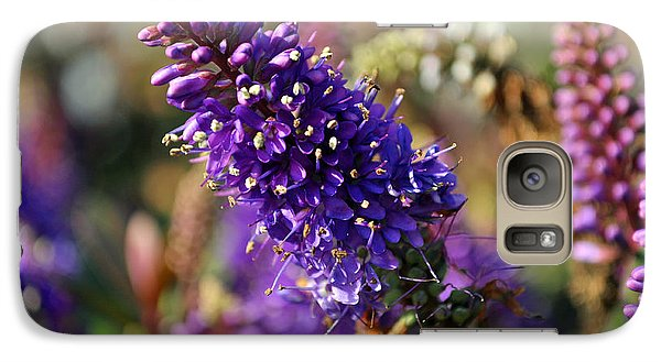 Galaxy Case featuring the photograph Blue Brush Bloom by Tikvah's Hope