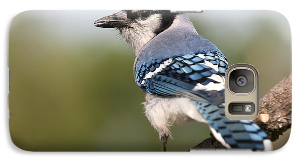 Galaxy Case featuring the photograph Blue Jay by Art Whitton