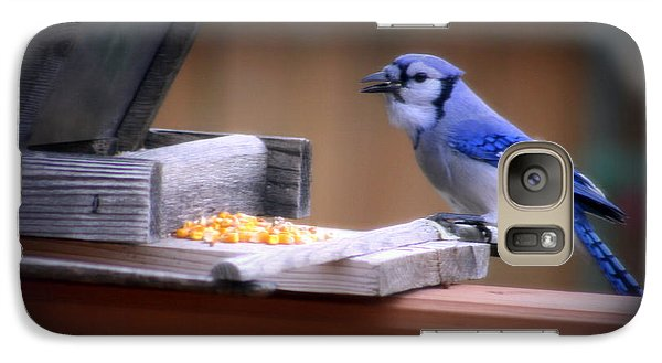 Galaxy Case featuring the photograph Blue Jay On Backyard Feeder by Kay Novy