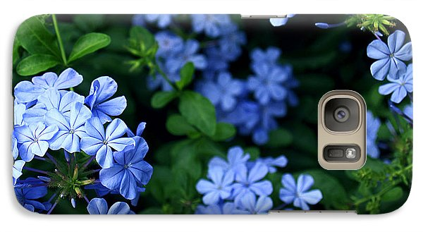 Galaxy Case featuring the photograph Blue Plumbago by Barbara Middleton