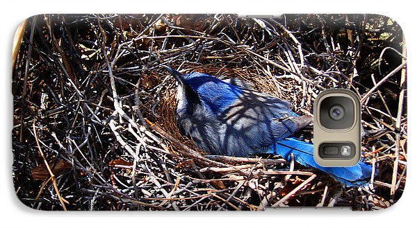 Galaxy Case featuring the photograph Bluebird In Her Nest by Susanne Still