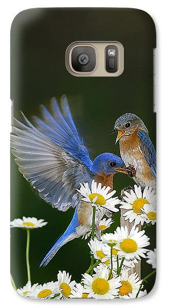 Galaxy Case featuring the photograph Bluebirds Picnicking In The Daisies by Randall Branham