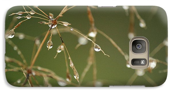 Galaxy Case featuring the photograph Branches Of Dew by Neal Eslinger