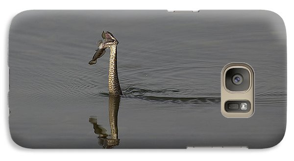 Galaxy Case featuring the photograph Breakfast by Eunice Gibb
