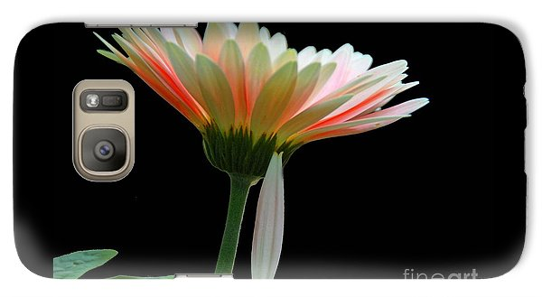 Galaxy Case featuring the photograph Broken Daisy by Cindy Manero
