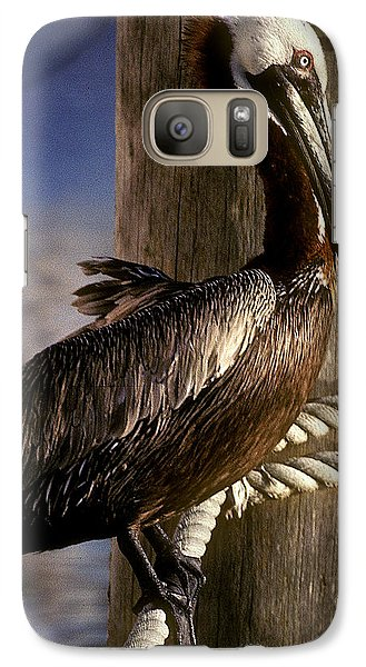 Galaxy Case featuring the photograph Brown Pelican In Key West 9l by Gerry Gantt