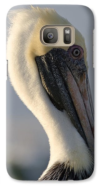 Galaxy Case featuring the photograph Brown Pelican Profile by Ed Gleichman