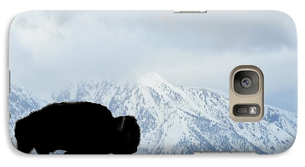 Galaxy Case featuring the photograph Buffalo Suvived Another Yellowstone Winter by Dan Friend
