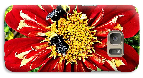 Galaxy Case featuring the photograph Busy Bees by Nick Kloepping