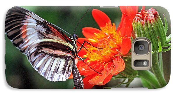 Galaxy Case featuring the photograph Butterfly - Orange by Larry Nieland