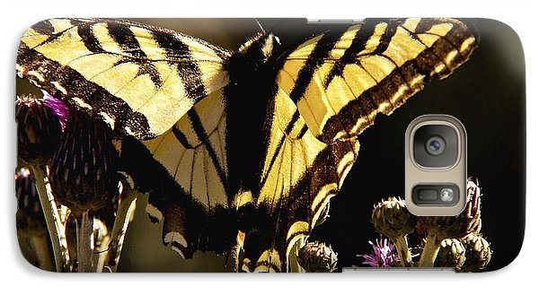 Galaxy Case featuring the photograph Butterfly And Thistle II by Angelique Olin