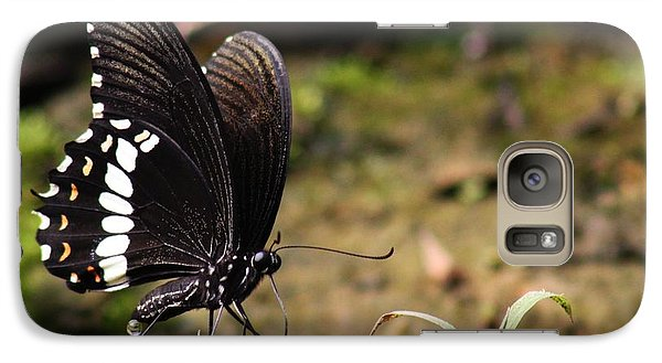Galaxy Case featuring the photograph Butterfly Feeding  by Ramabhadran Thirupattur