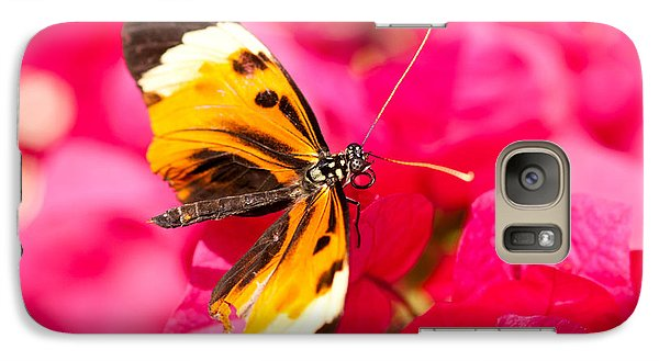 Galaxy Case featuring the photograph Butterfly by Les Palenik