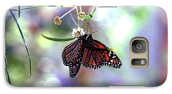 Galaxy Case featuring the photograph Butterfly Meet-up by Tam Ryan