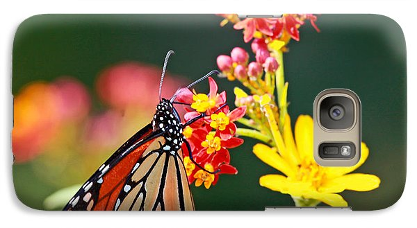 Galaxy Case featuring the photograph Butterfly Monarch On Lantana Flower by Luana K Perez