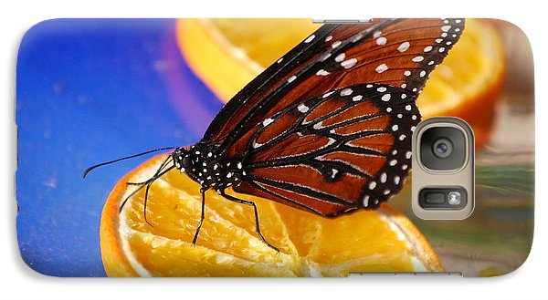 Galaxy Case featuring the photograph Butterfly Nectar by Tam Ryan