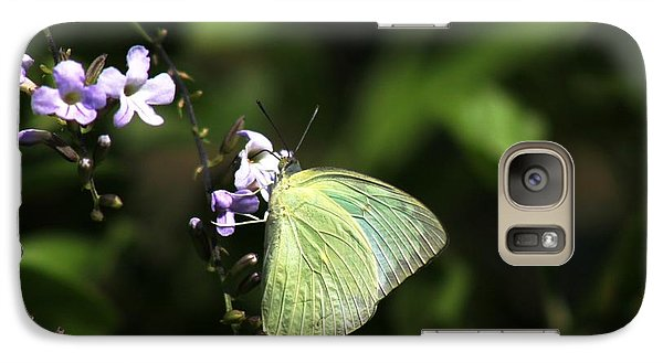 Galaxy Case featuring the photograph Butterfly On Purple Flower by Ramabhadran Thirupattur