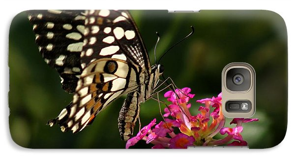 Galaxy Case featuring the photograph Butterfly by Ramabhadran Thirupattur
