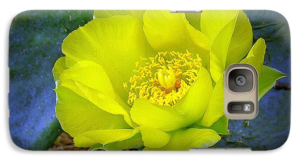 Galaxy Case featuring the photograph Cactus Flower by Judi Bagwell