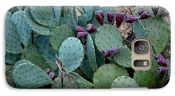 Galaxy Case featuring the photograph Cactus Plants by Maria Urso