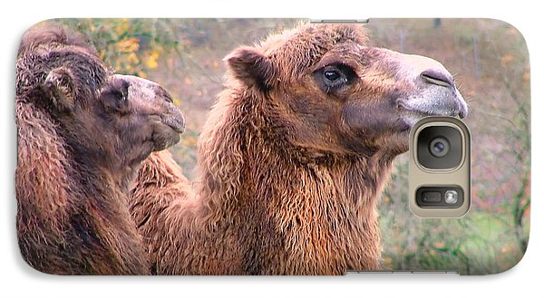 Galaxy Case featuring the photograph Calm Camels by Wendy McKennon
