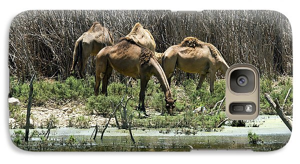 Galaxy Case featuring the photograph Camels At The Water by Arik Baltinester