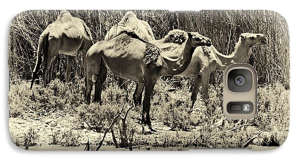 Galaxy Case featuring the photograph Camels In Lake Yeruham by Arik Baltinester