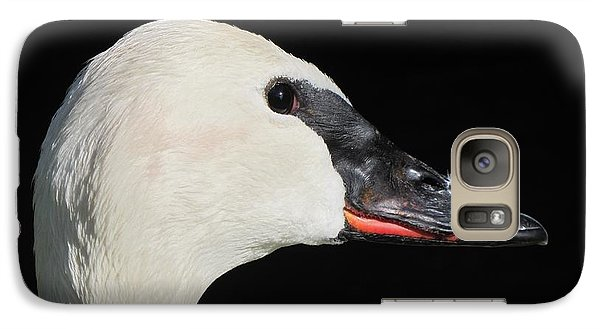 Galaxy Case featuring the photograph Trumpeter Swan by Maciek Froncisz